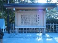 20110126-009.jpg